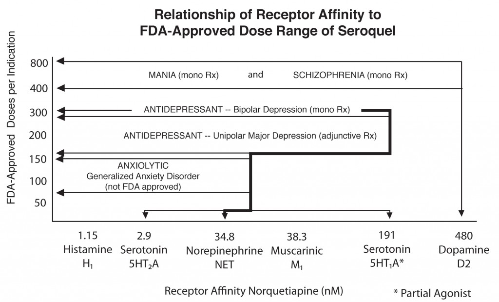 Chart: Relationship of Receptor Affinity to Dose in Seroquel