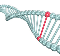DNA helix with one base pair highlighted